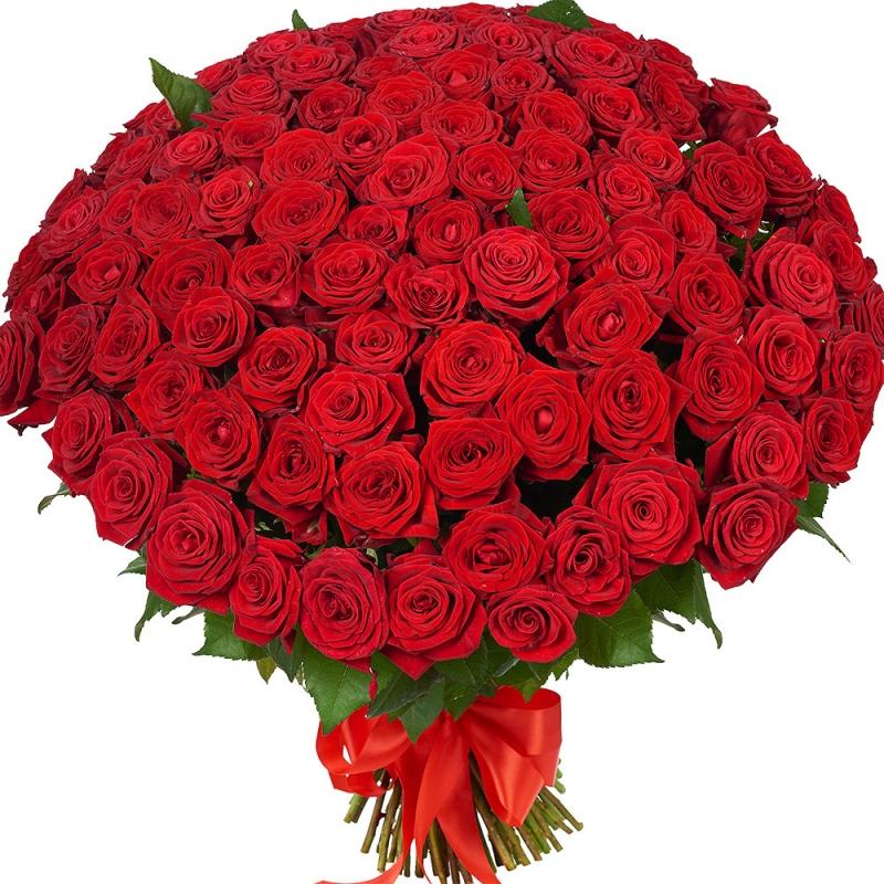 Днем рождения, цветы картинки любимой девушке